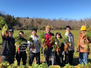 [ NEWS ] クルックフィールド@木更津で、 にんじん収穫研修をして参りました!の画像